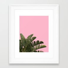 CANDY POP PALM TREE Framed Art Print