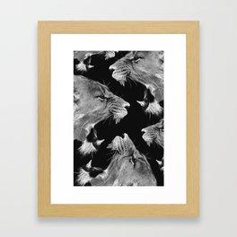 Lion B&W Framed Art Print