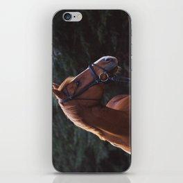 henry.  iPhone Skin