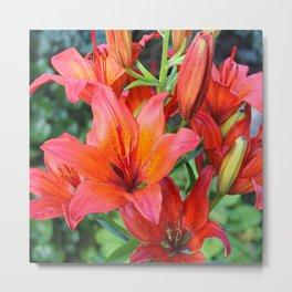 Day Lilies Metal Print