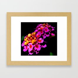 Colorful by Heart Framed Art Print
