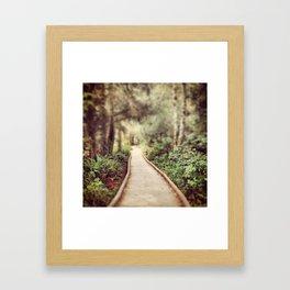 Pathway at Fort Clatsop National Memorial Framed Art Print