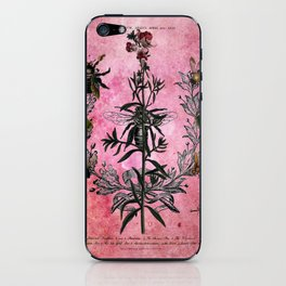 Vintage Bees with Toadflax Botanical illustration collage iPhone Skin