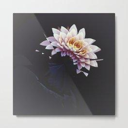 Broken Lotus Metal Print