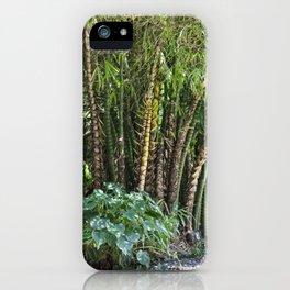 Palm Grove iPhone Case