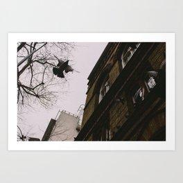 Flying by Art Print
