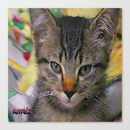 Swoozle's Tabby Kitten After Nap Canvas Print