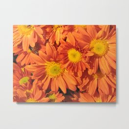 Petals a L'orange Metal Print