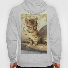 All Cats Are Black In The Dark Hoody
