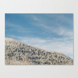 Cottonwood Canyon IIII Canvas Print