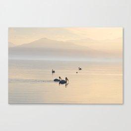 MYSTERIOUS SALTON SEA Canvas Print