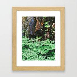Forest Rock Framed Art Print