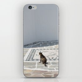 The Cat by The Aegean Sea on Milos iPhone Skin