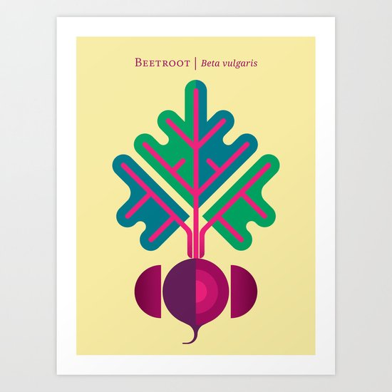 Vegetable: Beetroot Art Print