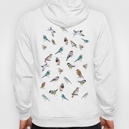 I love birds Hoody