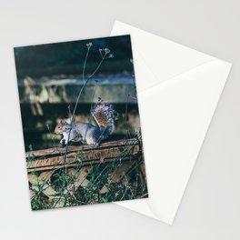 Ardilla en un parque de Londres Stationery Cards