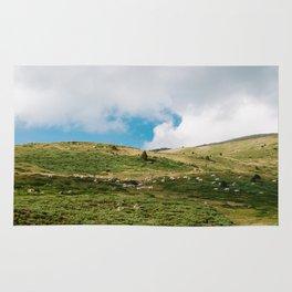 Le Troupeau des Chevaux/The Herd of Horses Rug