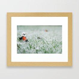 Sand Trooper Framed Art Print