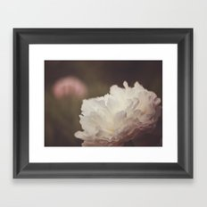 White and Pink Peonies Framed Art Print