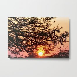 Pink Sunrise Forest Tree Branches Metal Print