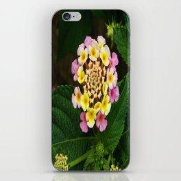 Fresh Lantana Flower Against Leaf Background iPhone Skin