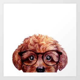 Toy poodle reddish brown with glasses Art Print