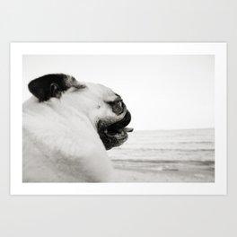 Pug Life | Reflecting at the Beach Art Print