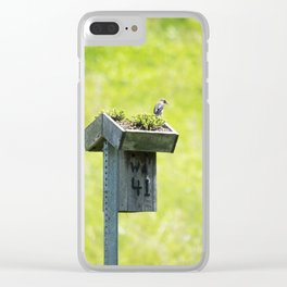 Longwood Gardens - Spring Series 237 Clear iPhone Case