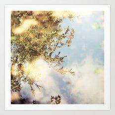Reflecting Tree Art Print