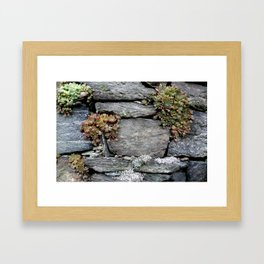 A Rock and Hardplace Framed Art Print