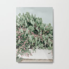 Prickly Pear Cactus and Flowers, Austin, Texas Metal Print