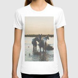 Camargue Horses III ... T-shirt