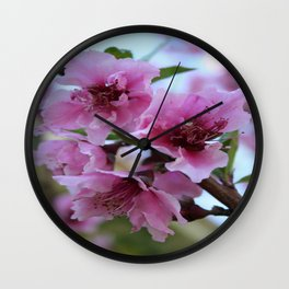 Peach Tree Blossom Close Up Wall Clock