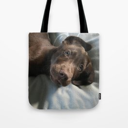 Henry, The Great Tote Bag