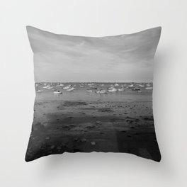 From the Shore - Plymouth Massachusetts Shoreline Throw Pillow