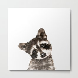 Baby Raccoon #1 Metal Print