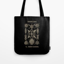 """""""Spumellaria"""" from """"Art Forms of Nature"""" by Ernst Haeckel Tote Bag"""