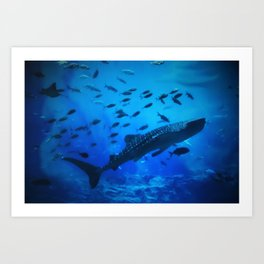 A Whale of a Teacher Art Print