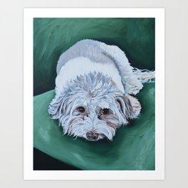 Bella Art Print