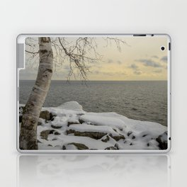Curves of the Silver Birch by Teresa Thompson Laptop & iPad Skin