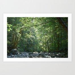 Elk Creek in Tillamook Oregon Art Print