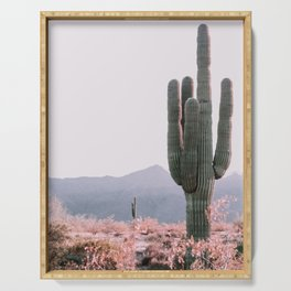 Arizona Cactus 3 Serving Tray
