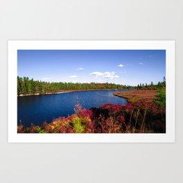 Lake in Halifax Art Print