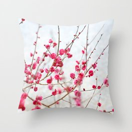 Beautiful Cherry Blossoms at the Imperial Palace in Kyoto, Japan Throw Pillow