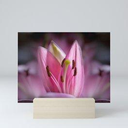 April Tulips Mini Art Print