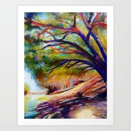 Shade On The Darling Art Print