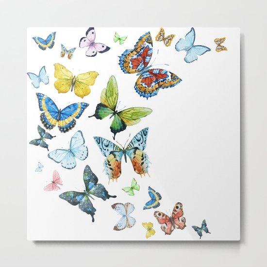 Butterflies 03 Metal Print