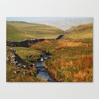 cassia beck Canvas Prints featuring Scaleber Beck by Steve Watson