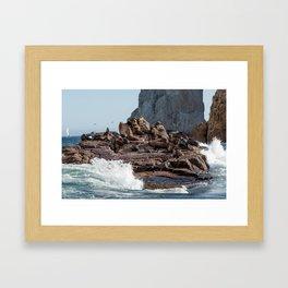 en las rocas Framed Art Print