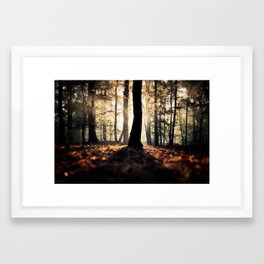 Variations Framed Art Print